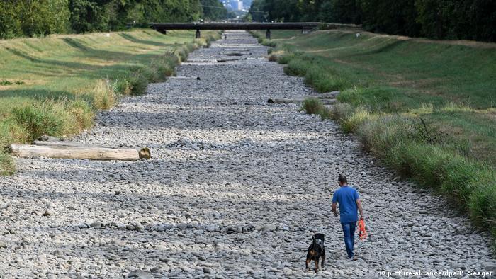 Calor en Alemania: Los peces mueren y los ríos desaparecen