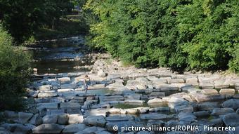 El río Dreisam cerca de Friburgo
