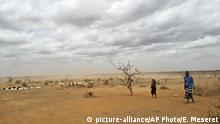 In this photo taken Sunday, Sept. 3, 2017, dust clouds blow across the parched landscape in the Danan district of the Somali region of Ethiopia, which hasn't seen significant amounts of rain in the past three years. Despite economic growth in the past decade that has made Ethiopia one of Africa's fastest-developing countries, rural areas are suffering as the nation faces its worst drought in years. (AP Photo/Elias Meseret) |