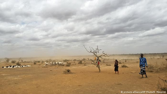 Dust clouds blow across the parched landscape in the Danan district of the Somali region of Ethiopia