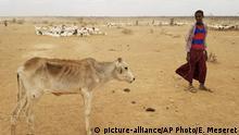 BG Dürre   Äthiopien