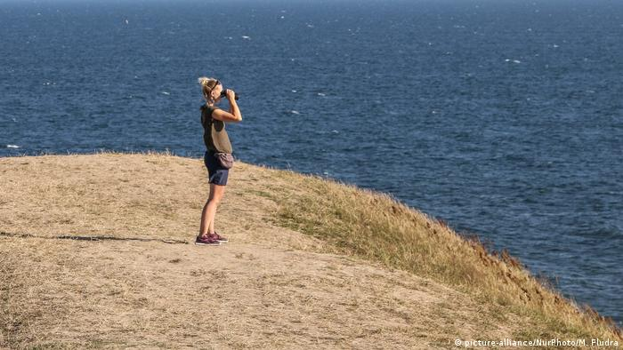 Woman looking for wildfires in Sweden (picture-alliance/NurPhoto/M. Fludra)