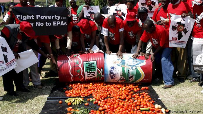 A group of protesters in red t-shirts roll two large drums over tomatoes spread on the ground.