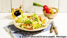 Kopfsalat mit Ei, Käse, Schinken, Thunfisch, Paprika, Frühlingszwiebeln
