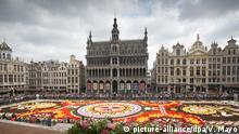 Belgien Blumenteppich in Brüssel