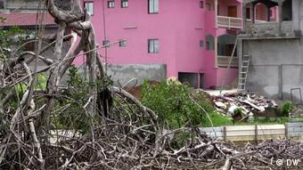 Die Mangroven retten, welche die Libreville retten