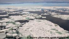 Norwegen - Packeis vor Spitzbergen