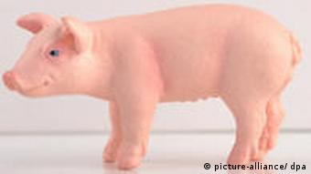 Photo montage of a toy pig in front of a box of Tamiflu