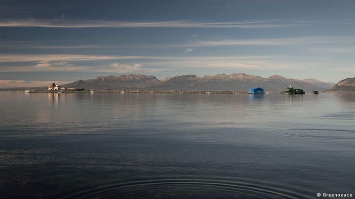 Lachszuchtfarmen im Süden Chiles