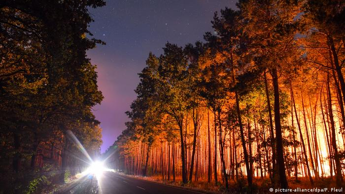 A light on a dark road while fires burn (picture-alliance/dpa/P. Zinken)