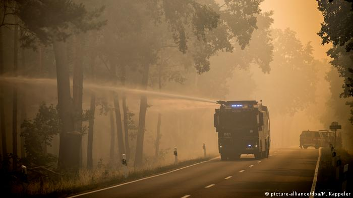 Deutschland - Waldbrand in Brandenburg (picture-alliance/dpa/M. Kappeler)