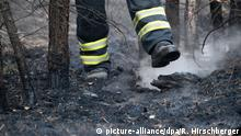 A firefighter after a forest fire in Brandenburg