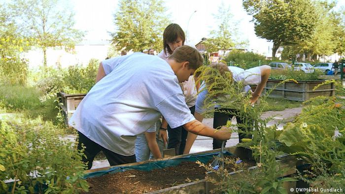 Los niños plantando en un bancal elevado.