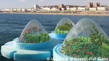 Großbritannien Studie schwimmende Gemüsefarmen im Meer