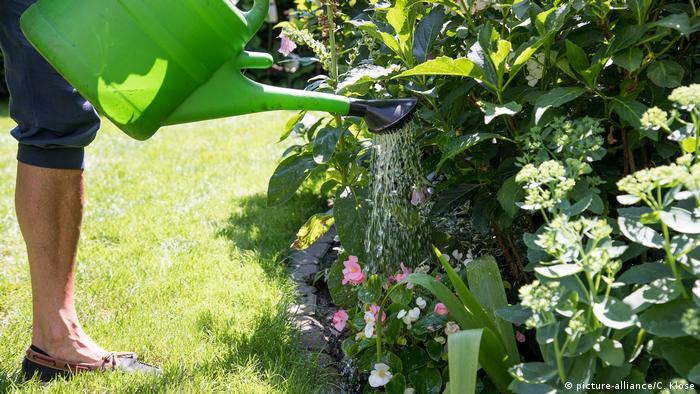 Kobieta podlewa ogródek konewką