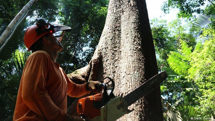 Brasilien Forstverwaltung in Jamari