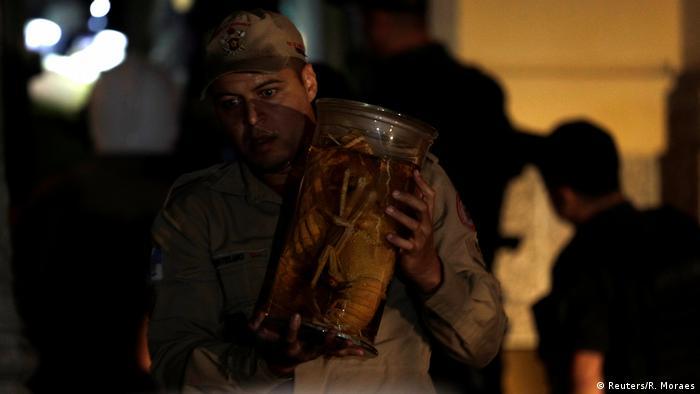 Bombeiro resgata peças do acervo do Museu Nacional