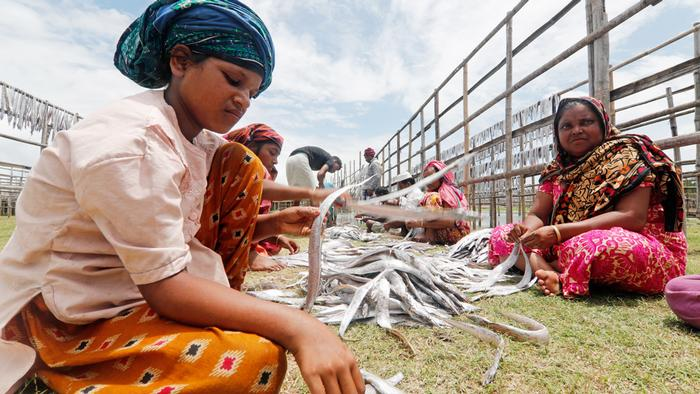 Bangladesch - Getrocknete Fische in Naziratek