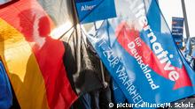 AfD and German flags (picture-alliance/M. Scholz)