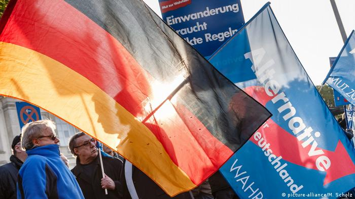 AfD rally (picture-alliance/M. Scholz)
