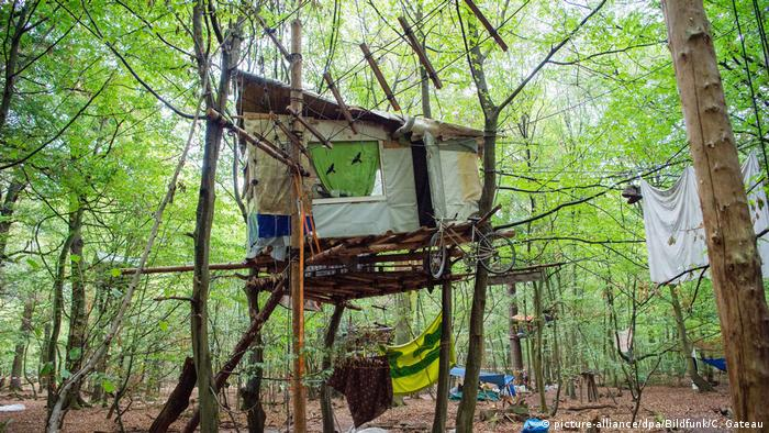 Tree houses in the Hambacher Forst