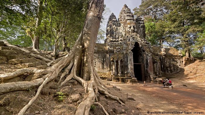 Kamboscha: Baum am Südtor zum Ta Phrom Tempel, Angkor Wat Tempel (picture-alliance/Global Travel Images)