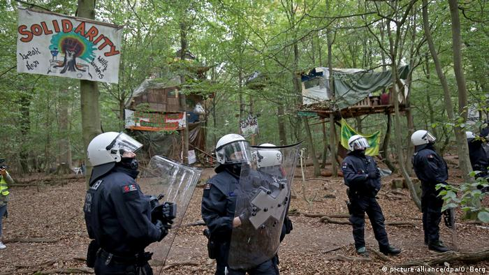 Police stand in front of tree houses in the Hambach Forest