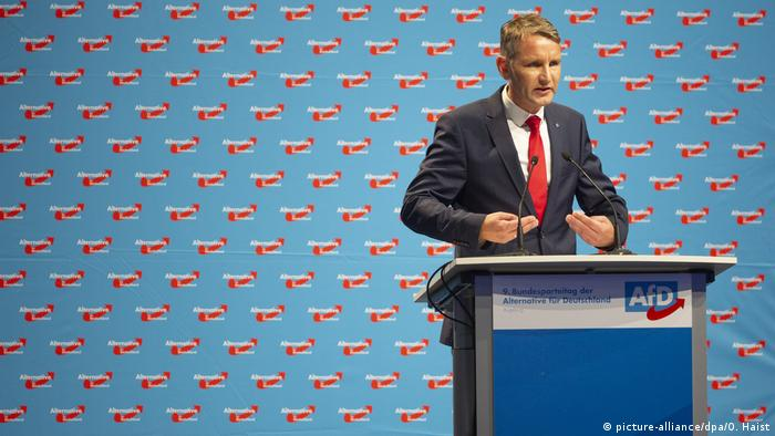 AfD 2018 (picture-alliance/dpa/O. Haist)