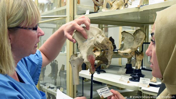 Співробітниця Інституту анатомії підписує тазові кістки