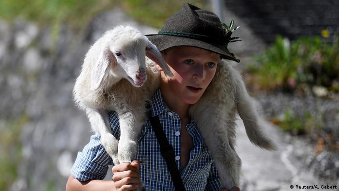 A young German shepherd in traditional clothing carries a lamb on his shoulders