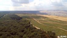 Luftaufnahme vom Hambacher Wald mit Tagebau im Hintergrund. Quelle:BUND