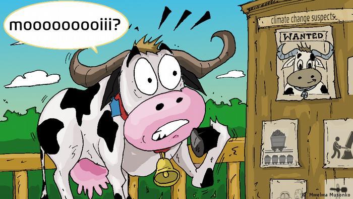DW eco@africa – a cartoon from Mwelwa Musonko