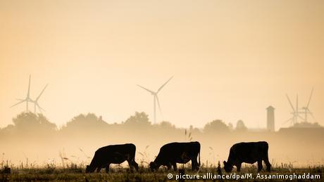 Лемвердер (Нижня Саксонія) Альтернативна енергетика Німеччини