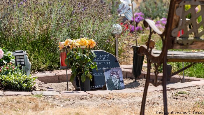 Germany: Pet cemetery wins cat grave court quarrel   News