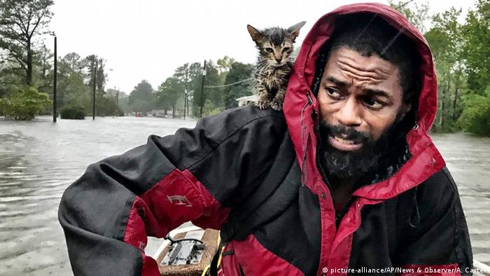 A man and a kitten on a boat