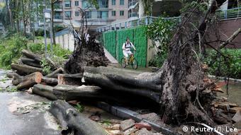 China Shenzhen Taifun Mangkhut