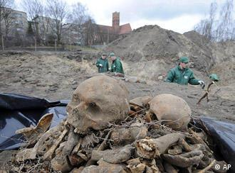 Freshly exhumed bones are seen as workers continue work during a mass grave exhumation in Malbork, northern Poland