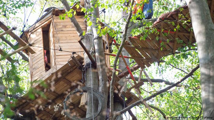 The treehouse in Hambach Forest where the journalist fell from to his death