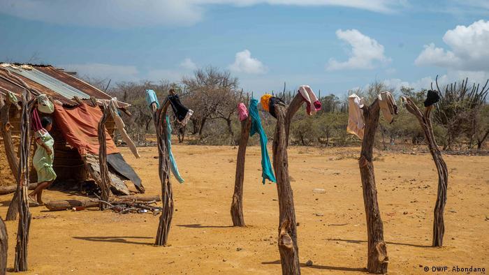 Los wayuu viven en rancherías, territorios apartados de la civilización, sin servicios públicos básicos como alcantarillado o luz eléctrica.