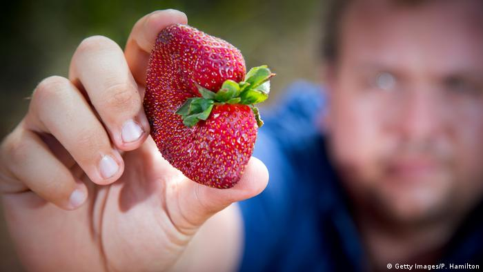 Woman in Australia charged over supermarket strawberry needle scare