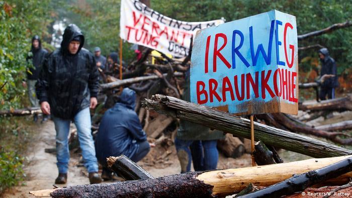 Акция экоактивистов в Хамбахском лесу