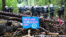 Hambach forest (picture-alliance/dpa/C. Gateau)
