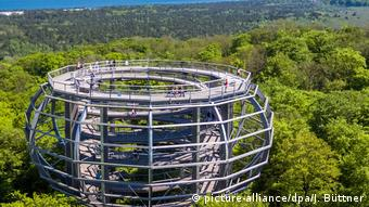 The treetop path in the shape of an eagle's nest (picture-alliance/dpa/J. Büttner)