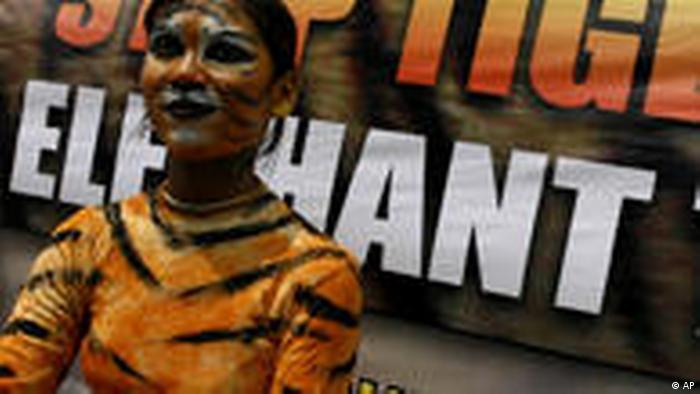 Pemerintahan Jokowi Ingin Perketat Uu Perlindungan Satwa Liar Dunia Informasi Terkini Dari Berbagai Penjuru Dunia Dw 08 06 2016