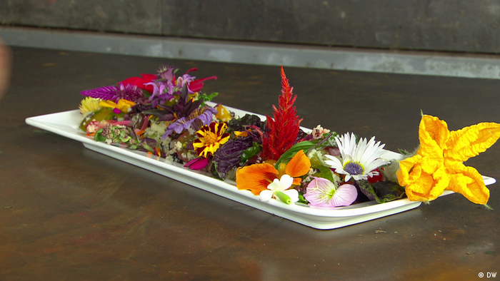 DW eco@africa - A plate of colorful flowers