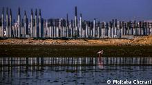 Plastikverschmutzung im Persischen Golf