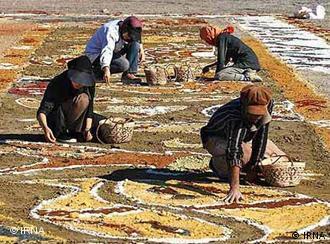 هنرمندان جوان ایرانی در حال ترسیم نقشها بر ماسهها