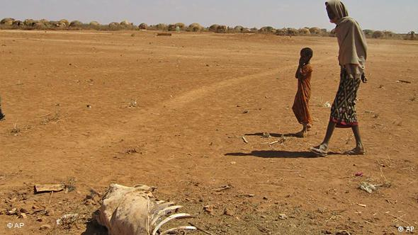 A father and son walk past the skeleton of a cow in Ethiopia