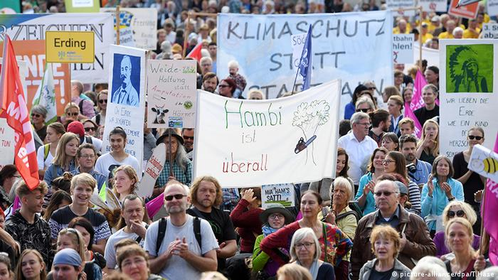 Protesters with signs at the Hambach Forest