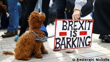 England Anti-Brexit Demonstranten in London